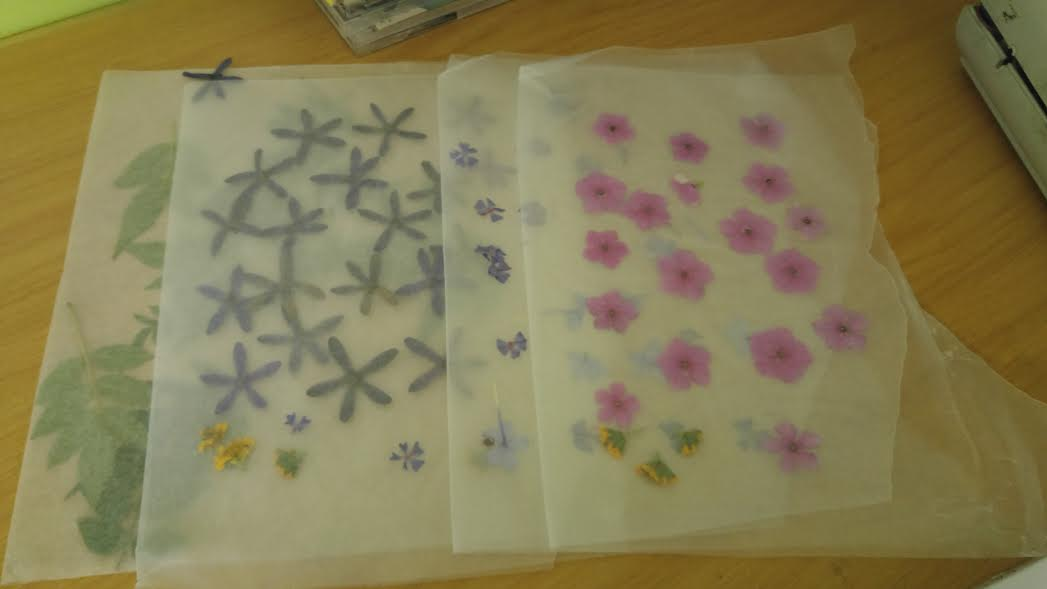 Pressed flowers bookmark kids fun art crafts outdoor the first thing you need to do is gather some flowers select a few colours and place them between some heavy books between wax paper mightylinksfo